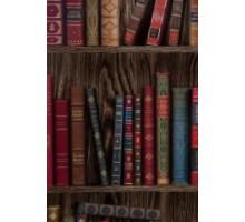 Панель 7мм Библиотека-609  2,7*0,25м Ярцево упрочненная